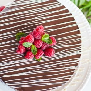 chocolate glazed bird's milk torte