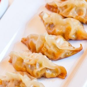 pork potstickers on tray