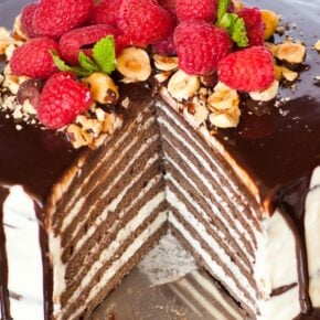 A piece of 8 layer chocolate cake on cake stand, with whipped cream and raspberries
