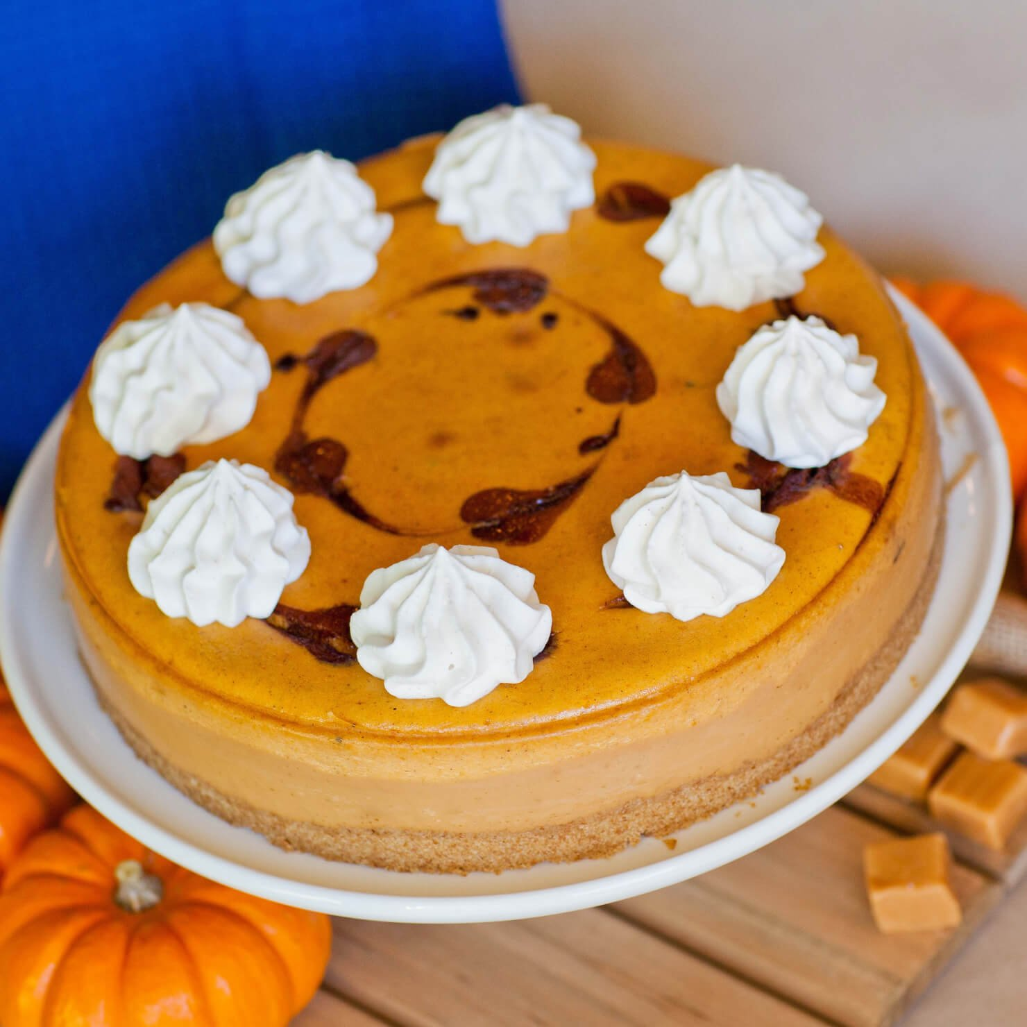 Pumpkin Caramel Cheesecake with chocolate swirls