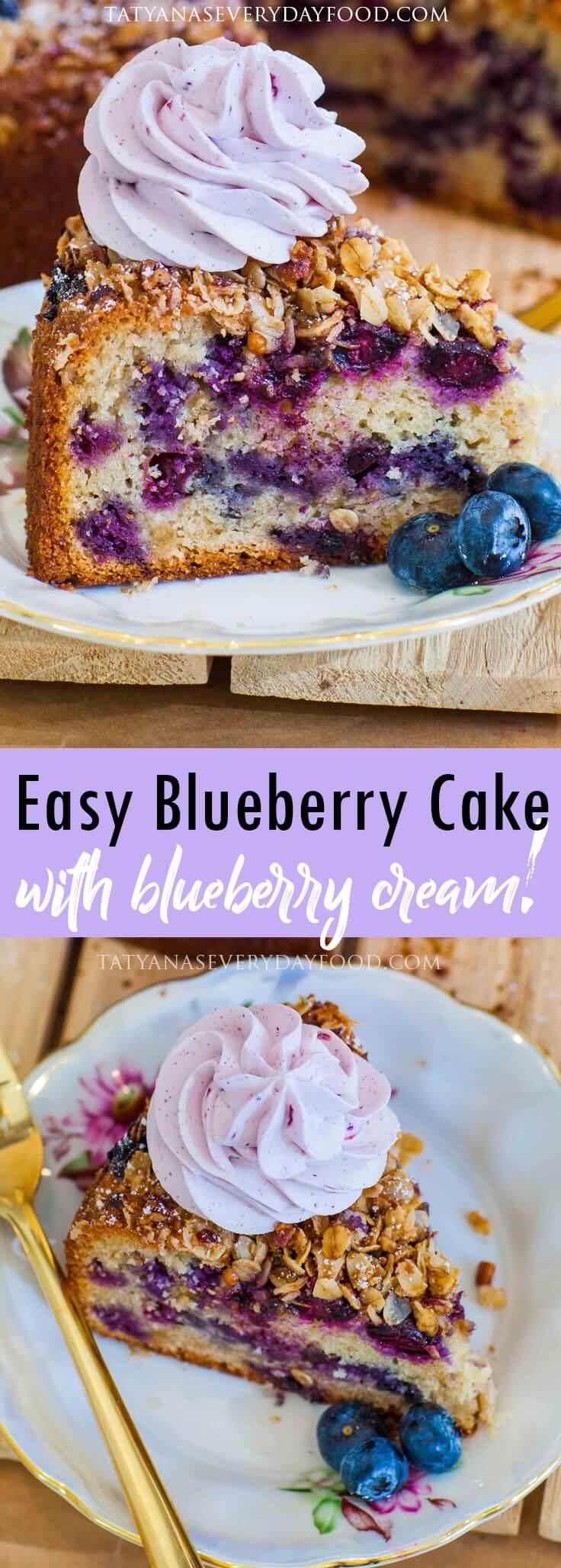 Blueberry Cake with whipped cream