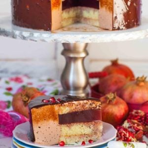 chocolate mousse cake with pomegranate gelee