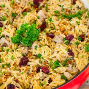 creamy chicken orzo pasta recipe with cranberries