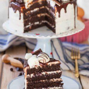 no-fail chocolate sponge cake