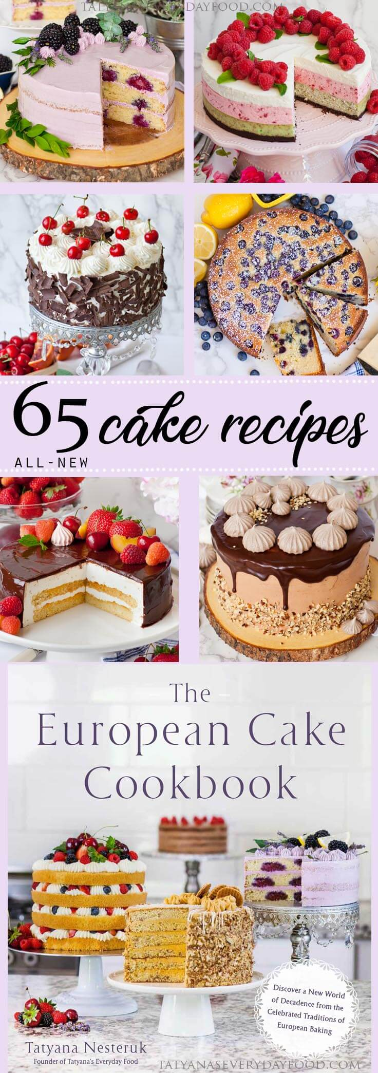 The European Cake Cookbook on sale now!