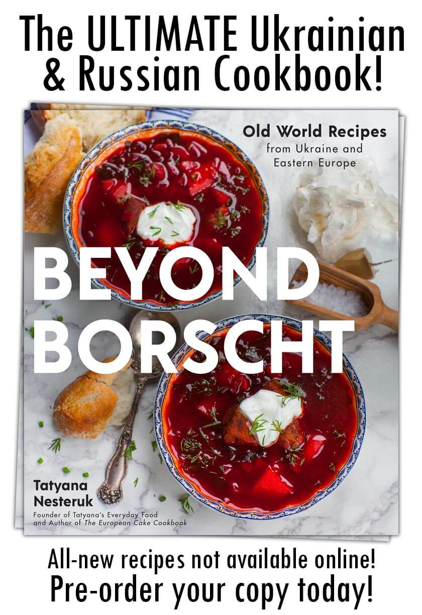 Beyond Borscht cookbook promo