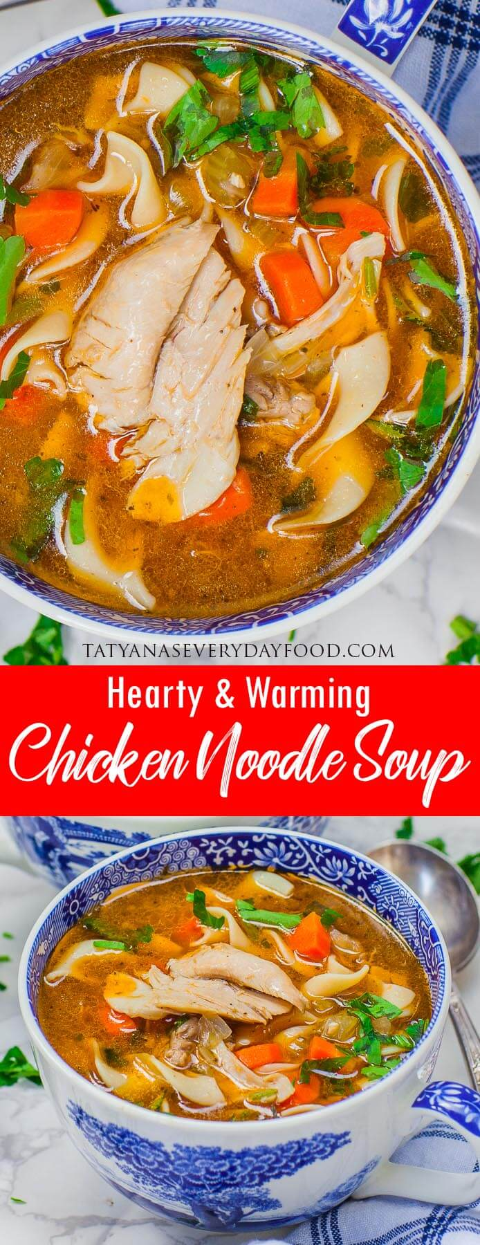 Chicken Noodle Soup video recipe