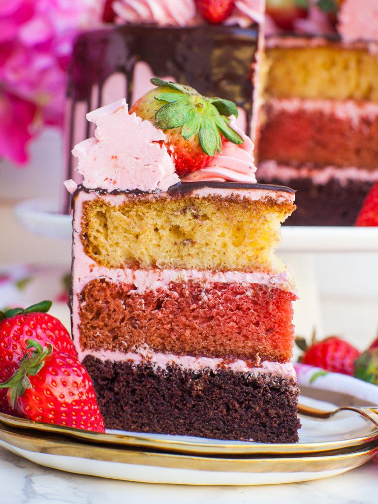 inside neapolitan cake with vanilla, strawberry and chocolate cake
