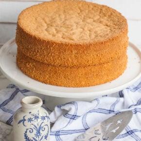 simple vanilla sponge cake recipe with video tutorial