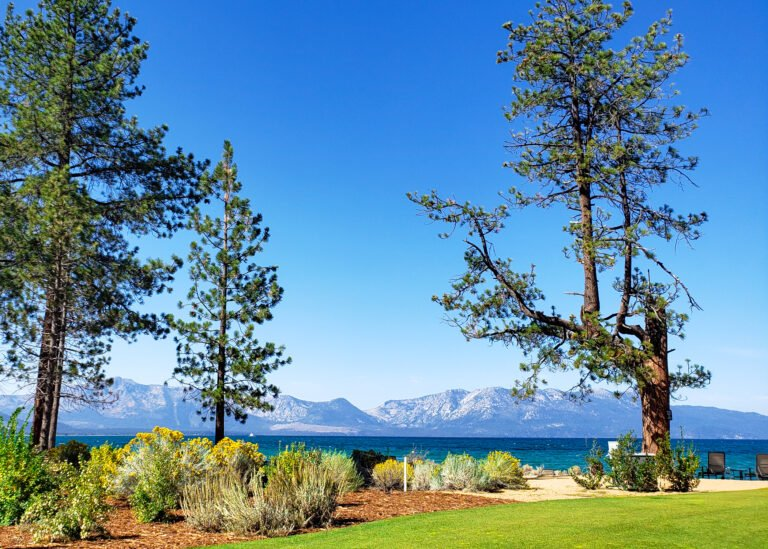 the beach at Egdewood Tahoe with lake and mountain views