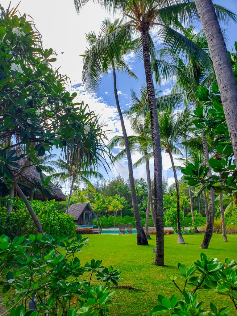 resort ground at Intercontinental Thalasso